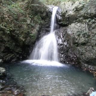 そばどんの滝