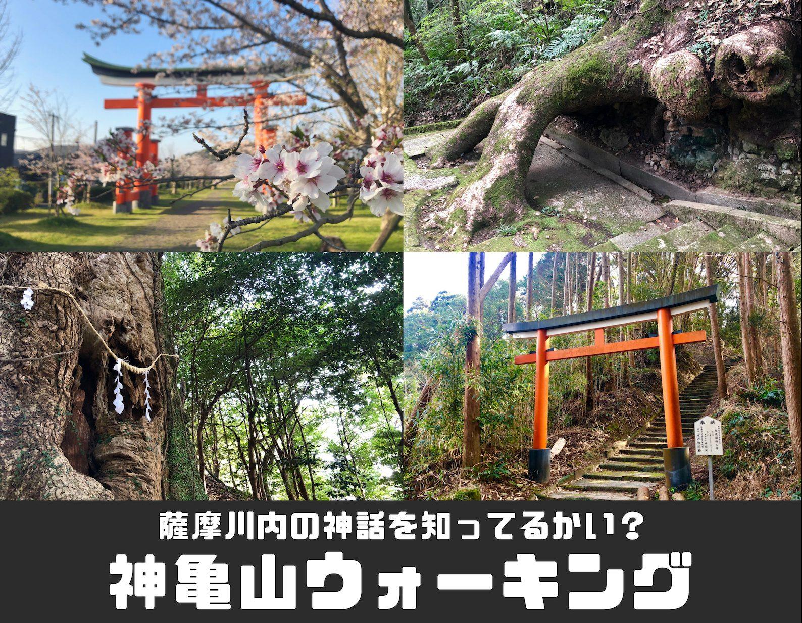 薩摩川内の神話を知ってるかい?神亀山ウォーキング