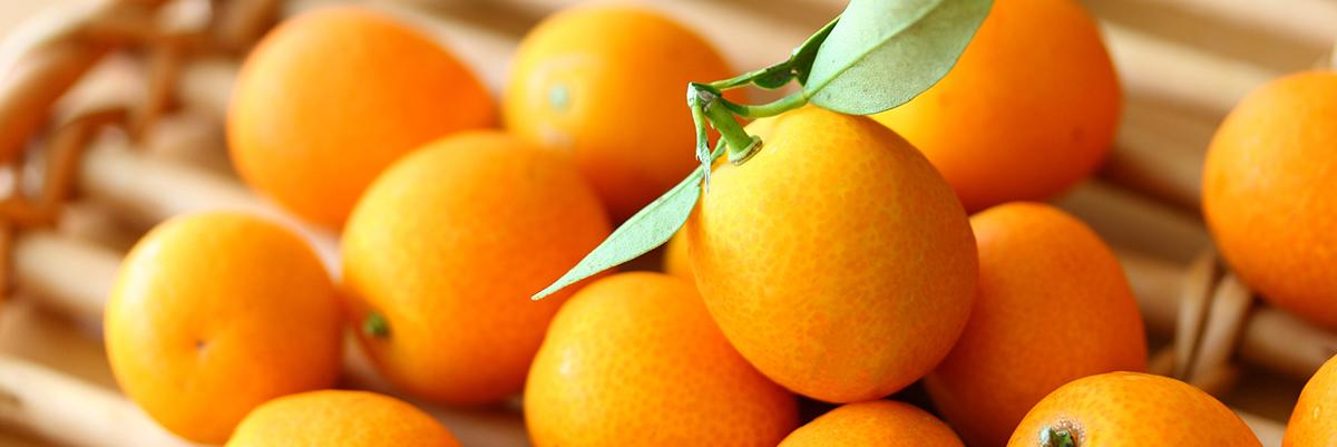 商品カテゴリー: 農産物・農産物加工品