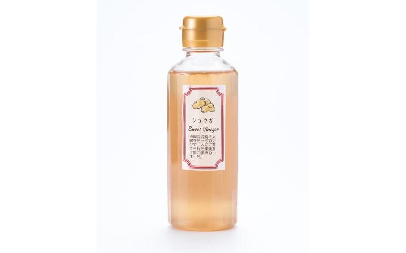 生姜シロップ 200ml <薩摩ビネガー工房> ジンジャーシロップ 鹿児島県産