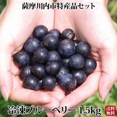 冷凍ブルーベリー 1.5kg