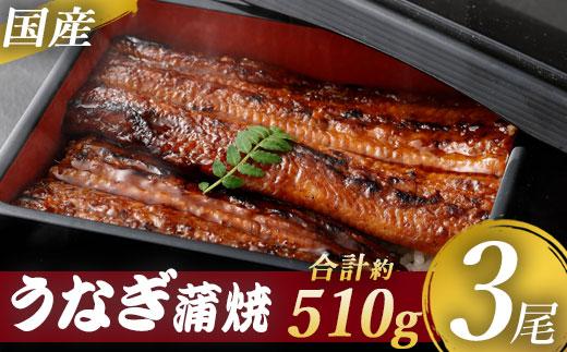 【送料込】九州産うなぎ蒲焼 ×3尾 <薩摩川内鰻>