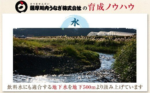 国産うなぎ蒲焼(きざみ)×2袋 合計160g <薩摩川内鰻>