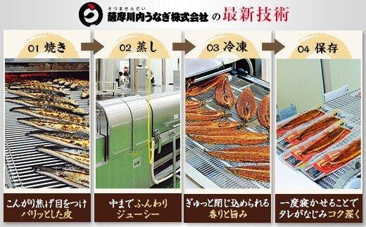 【送料込】九州産うなぎ蒲焼 ×2尾 <薩摩川内鰻> 薩摩川内うなぎ