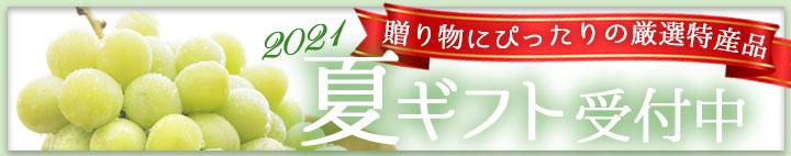 商品カテゴリー: <span>g-02 夏ギフト・お中元</span>