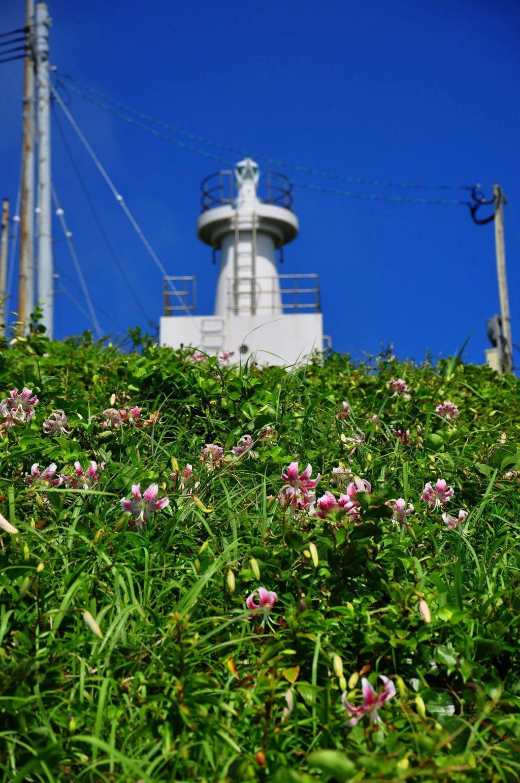 鳥ノ巣山展望台
