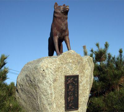孤島の野犬像