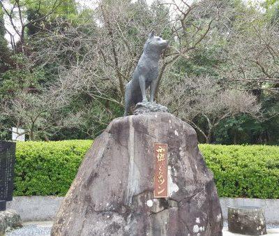 古い記事: ツンの飼い主、ご存知ですか? 東郷町藤川 藤川天神