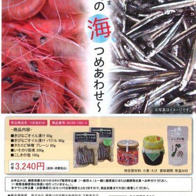 古い記事: 「甑島の海つめあわせ」期間限定発売!