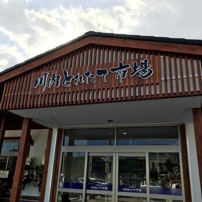 古い記事: 「川内とれたて市場」グランドオープン!!