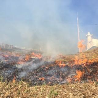 古い記事: 鳥ノ巣山一帯の野焼きを行いました!
