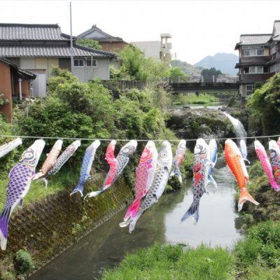 古い記事: 湯之滝公園に鯉のぼりが出現!
