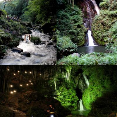 古い記事: 藤本滝のライトアップが始まりました!