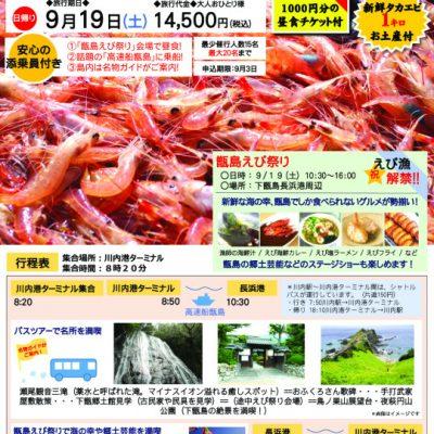 古い記事: 下甑島観光とえび祭りツアー