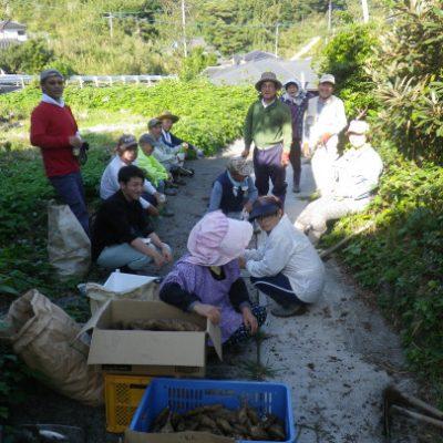 古い記事: 下甑島西山地区に地域おこし協力隊として着任しました