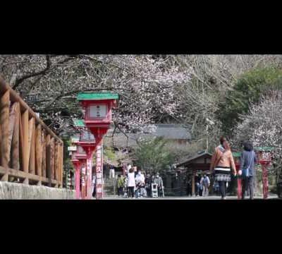 古い記事: 藤川天神-薩摩川内市東郷町-