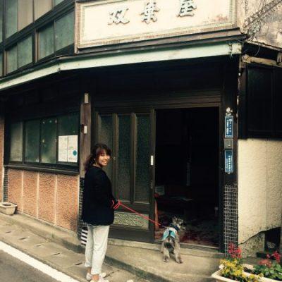 古い記事: この夏行きたい「西郷どん」スポット(3)仙太郎、高城温泉に行