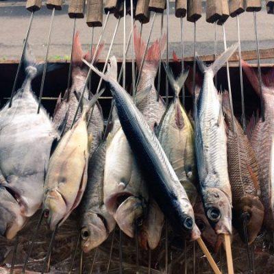 古い記事: KOSHIKI FISHERMANS Fest ドキュメント
