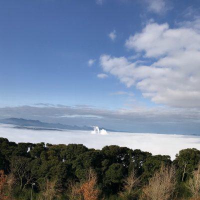 古い記事: 「雲海」自然が生み出す美しい景色・・・寺山いこいの広場201