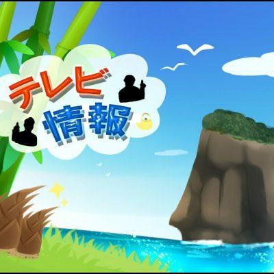 古い記事: 【テレビ情報】沸騰ワード10(日テレ)下甑島が放送されます!