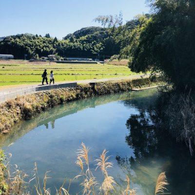 古い記事: ONSEN・ガストロノミーウォーキング in 市比野温泉(前
