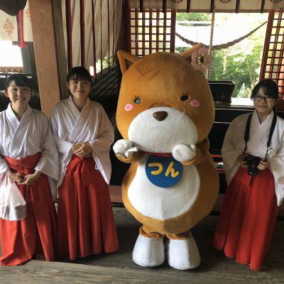 古い記事: 新田神社・夏の行事「御神鏡清祭」