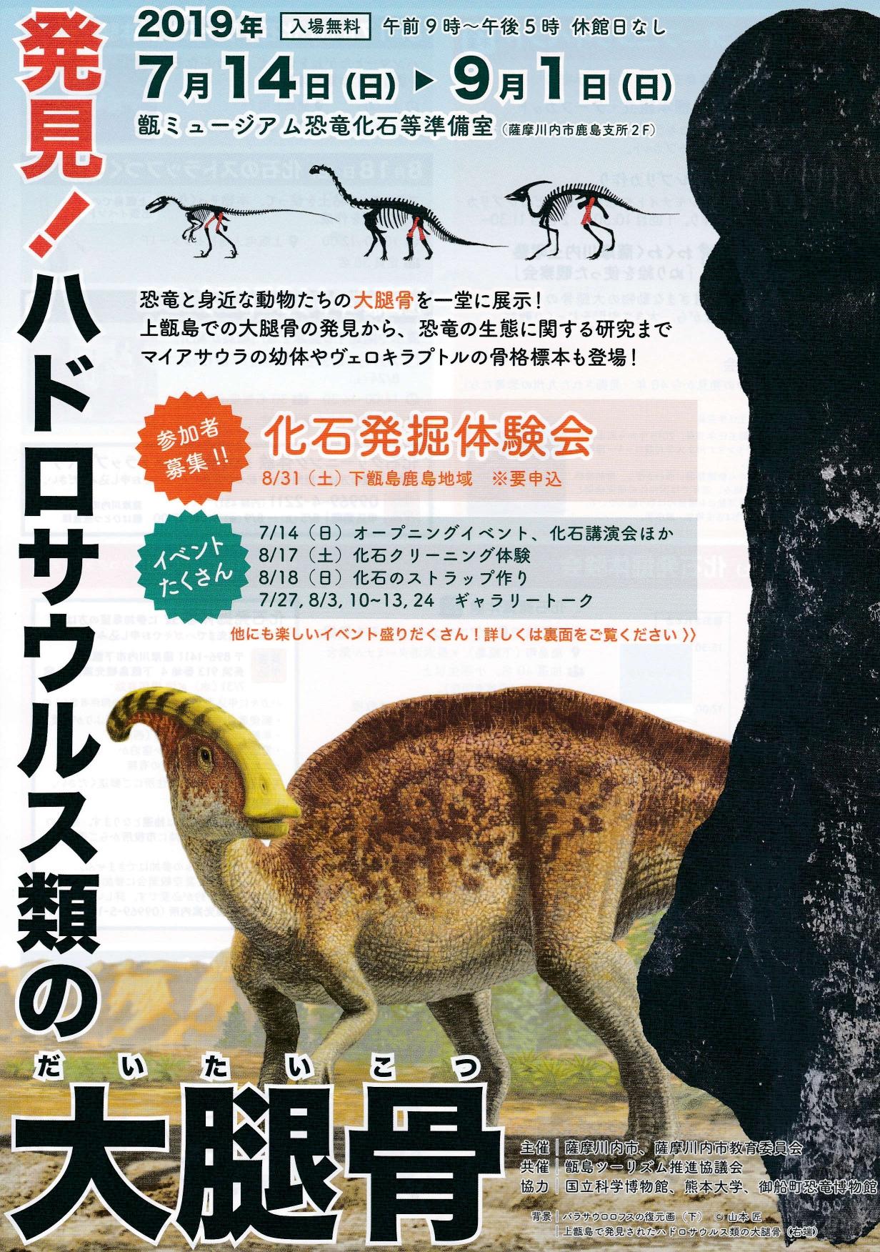 発見!ハドロサウルス類の大腿骨展示! 化石発掘体験会などイベントも!