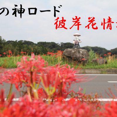 古い記事: 東郷町宍野・田の神ロードの彼岸花が見頃を迎えます