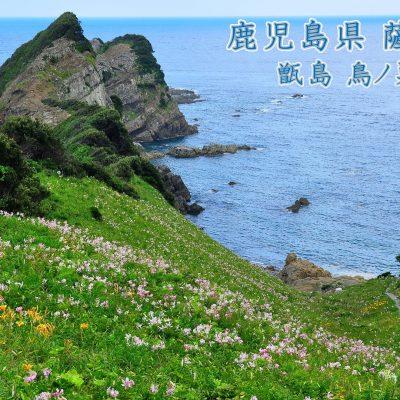 古い記事: バーチャル背景で地域を応援しよう!に薩摩川内市の風景が登場!
