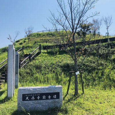 古い記事: 平佐西の歴史散策(3)天辰寺前古墳