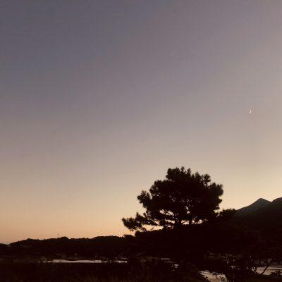 古い記事: フリーチョイスで行く!1泊2日こしき島旅(3)