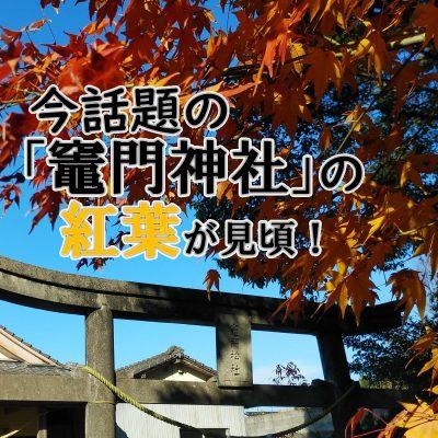 古い記事: 今話題「竈門神社」の紅葉が見頃!