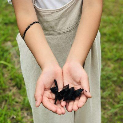 古い記事: 竹炭ですこやかな暮らし「竹炭工房アカリトキ」
